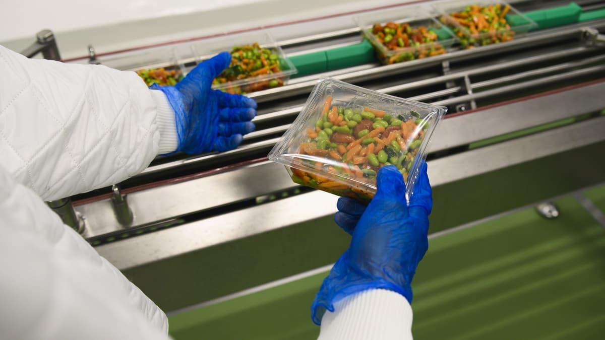 Person sortiert Salate an einer Maschine